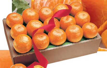 Honey Tangerines (8 count)