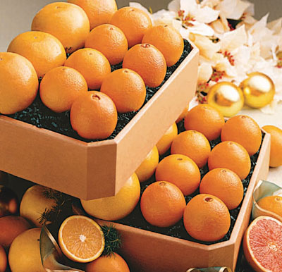 Navel Oranges & Ruby Red Grapefruit (40 lbs.)